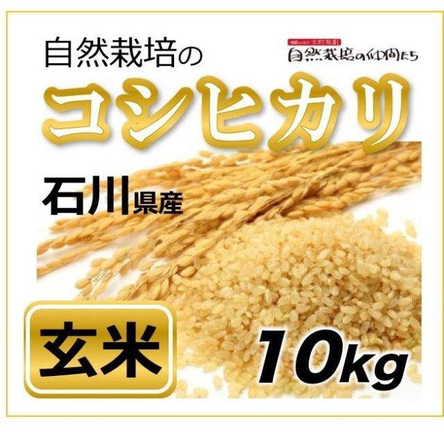 石川コシヒカリ玄米10kg