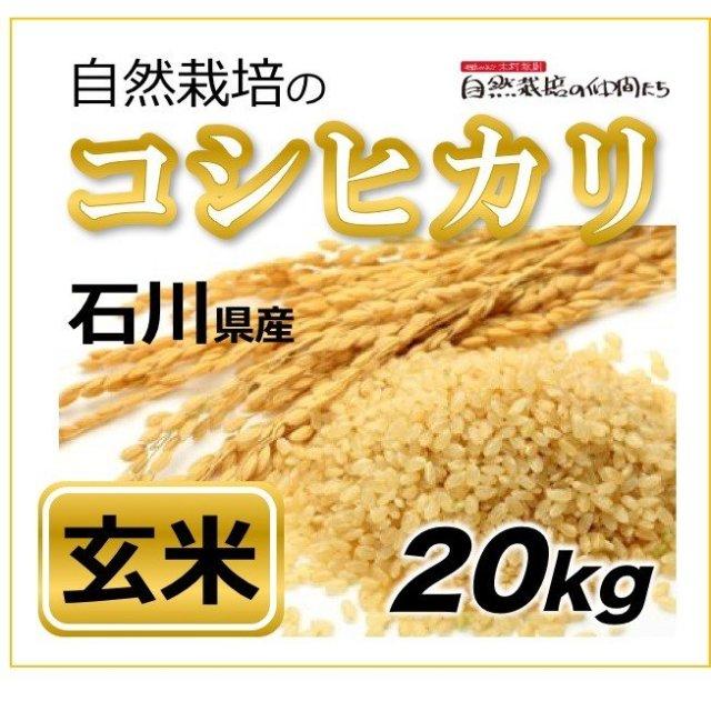 石川コシヒカリ玄米20kg