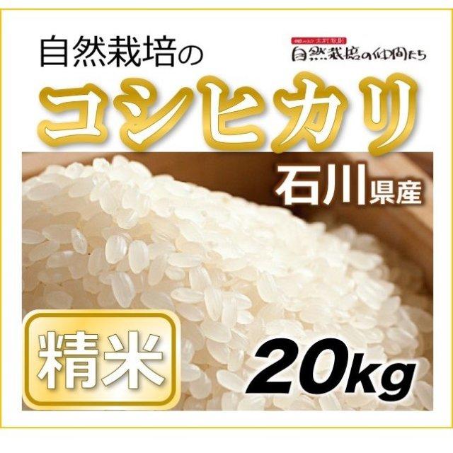 石川コシヒカリ精米20kg
