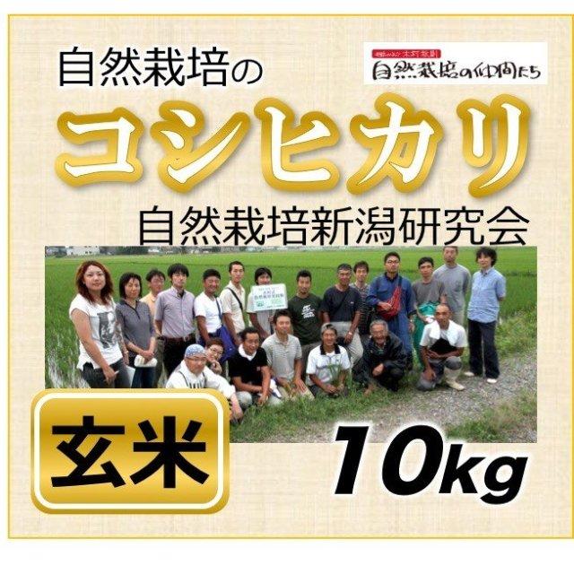 新潟コシヒカリ玄米10kg