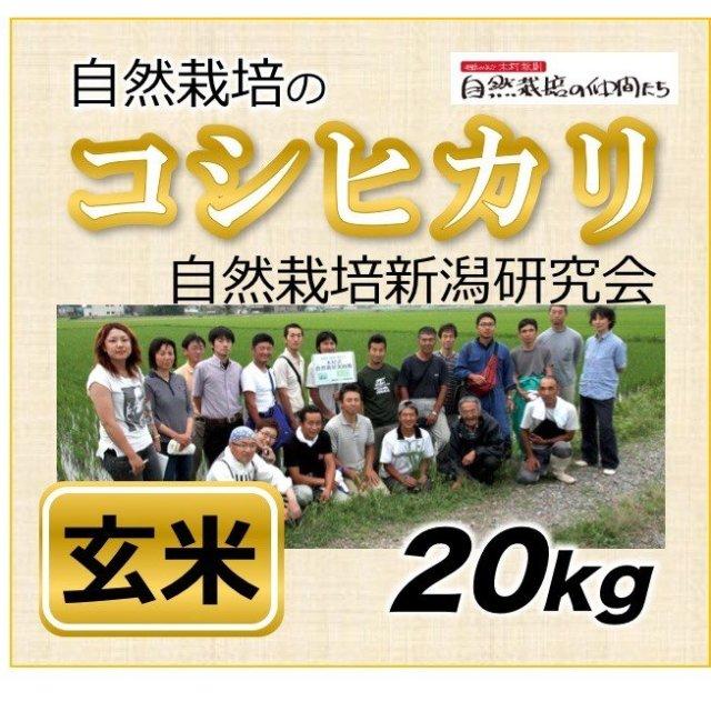 新潟コシヒカリ20kg
