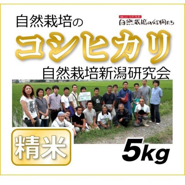 新潟コシヒカリ精米5kg