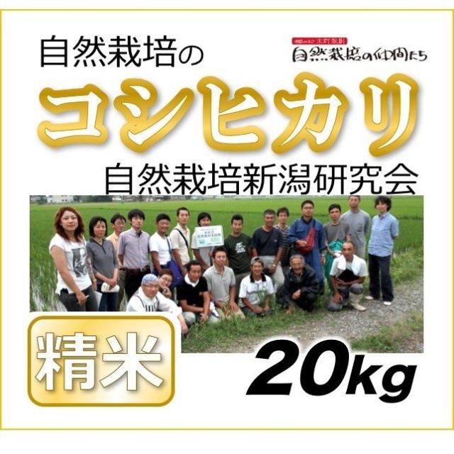 新潟コシヒカリ精米20kg