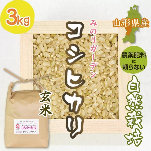 玄米3kg コシヒカリ「みのりガーデン」山形県 自然栽培 お米 宅配 無肥料 令和元年度産