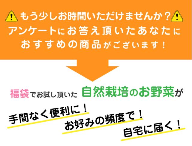 福袋アンケート→野菜セットのススメ