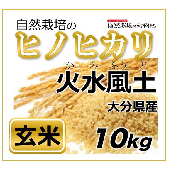 ヒノヒカリ 玄米10kg