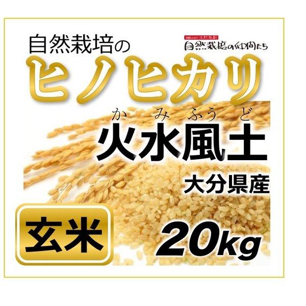 ヒノヒカリ 玄米20kg