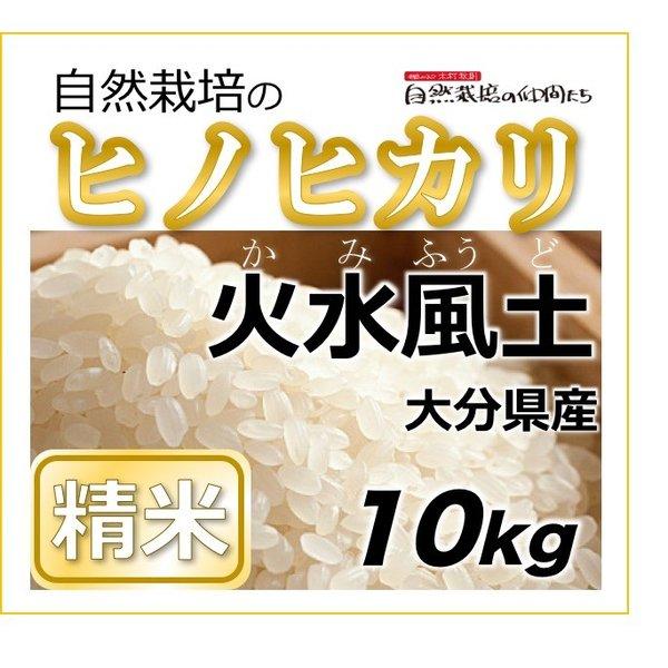 ヒノヒカリ 精米10kg