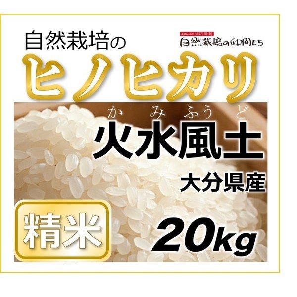 ヒノヒカリ 精米20kg