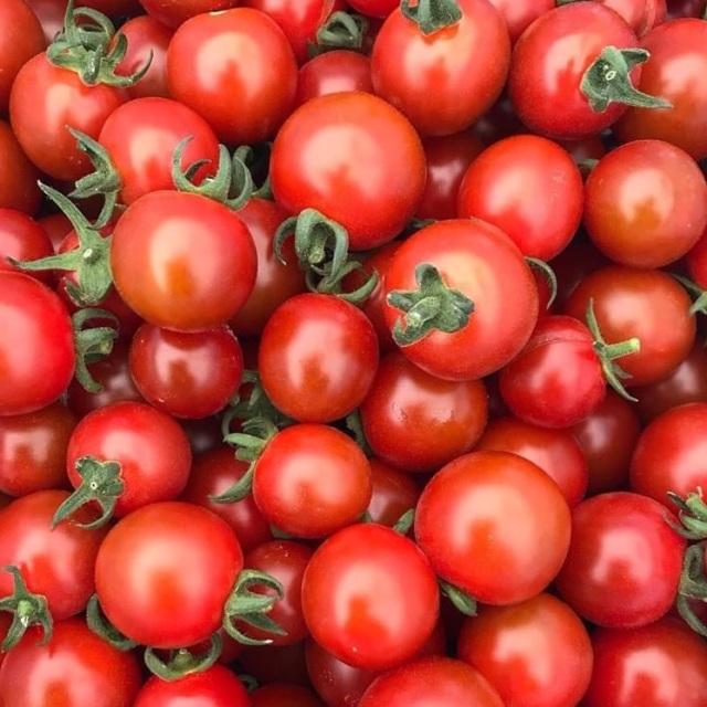 ミニトマトイメージ
