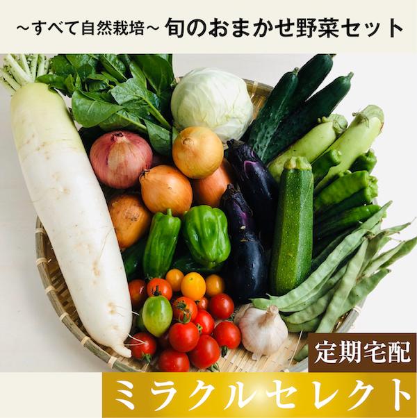 おまかせ野菜セットミラクル