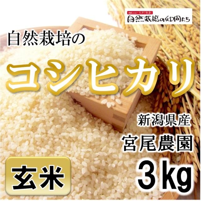 宮尾農園 コシヒカリ玄米3kg