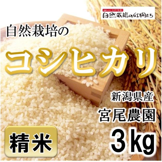 宮尾農園 コシヒカリ精米3kg