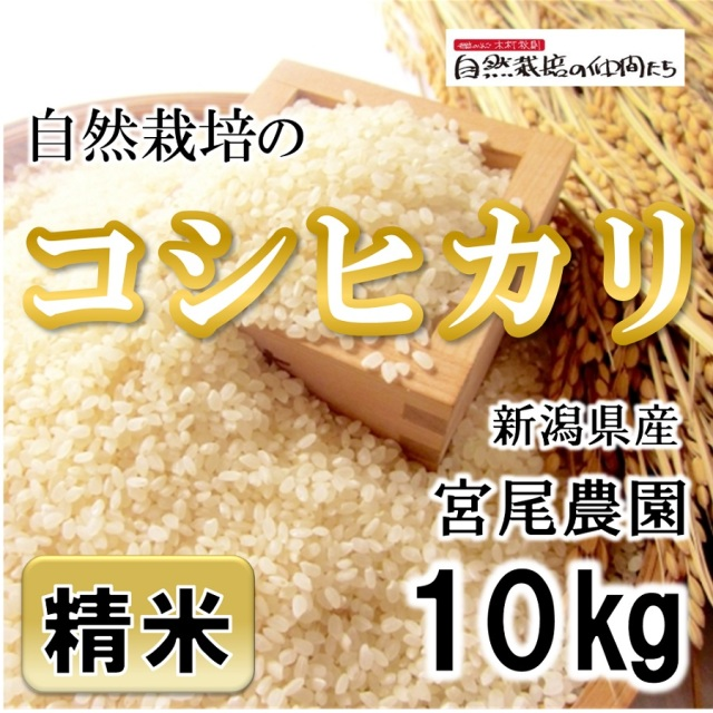 宮尾農園 コシヒカリ精米10kg
