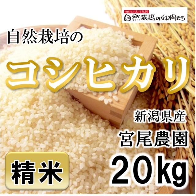 宮尾農園 コシヒカリ精米20kg