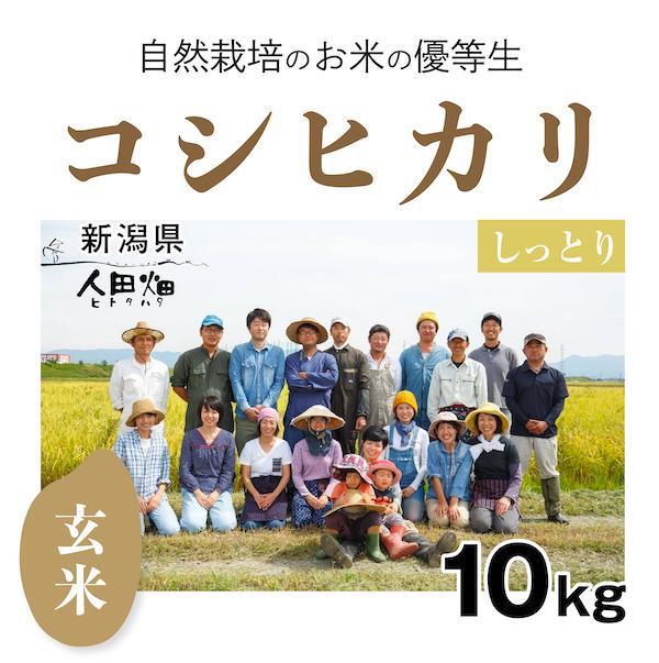 人田畑コシヒカリ 商品画像