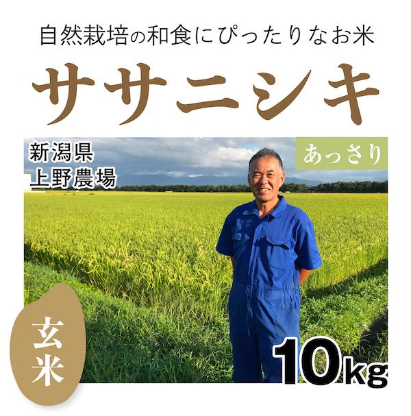ササニシキ 商品画像