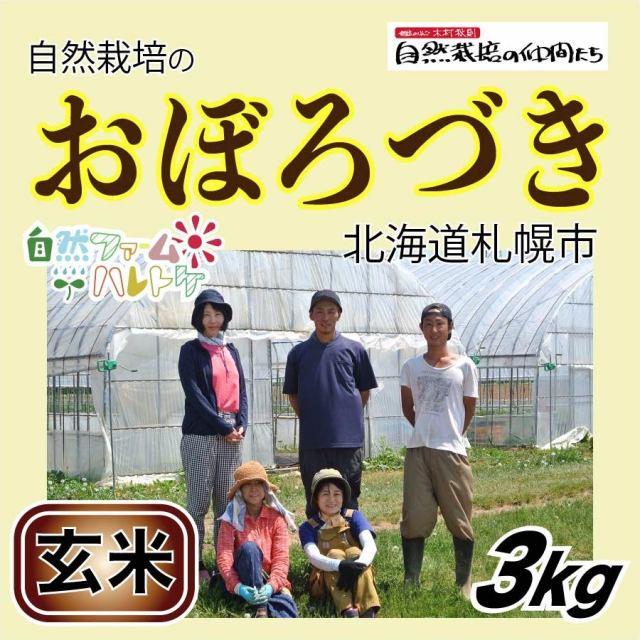 おぼろづき玄米3kg