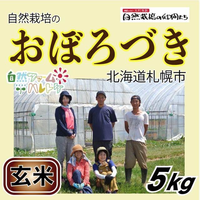 おぼろづき玄米5kg