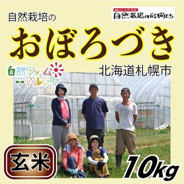 おぼろづき玄米10kg