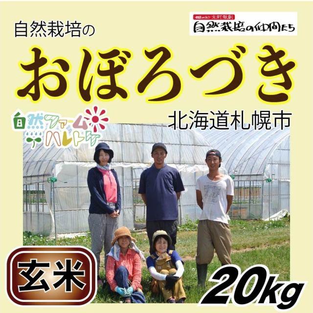 おぼろづき玄米20kg