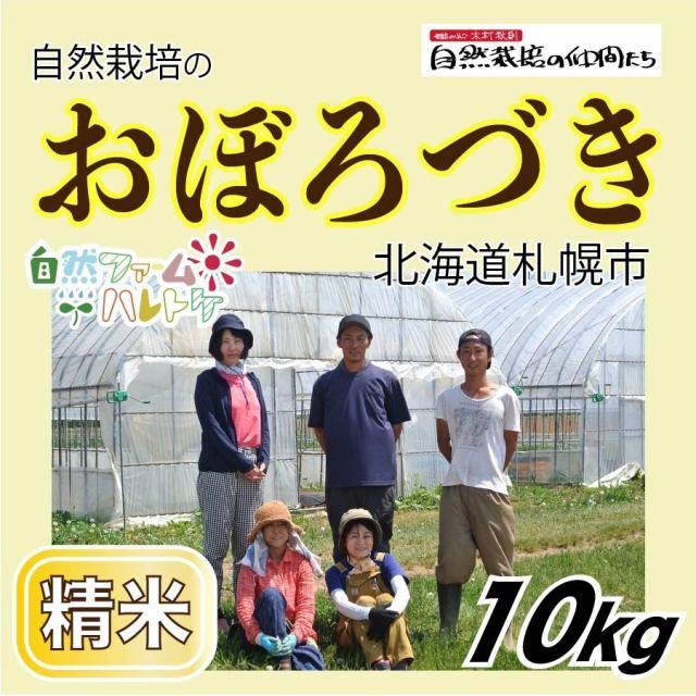 おぼろづき精米10kg