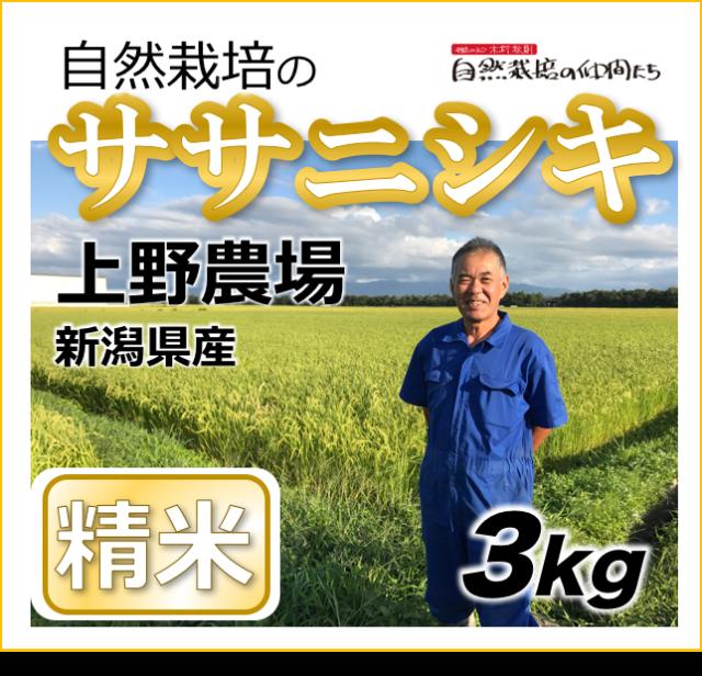 ササニシキ精米3kg