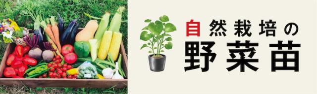 野菜苗バナー
