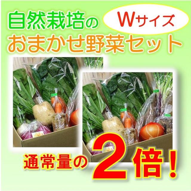 たっぷり野菜セットW