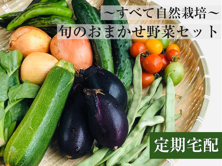 お野菜セットトップ画像
