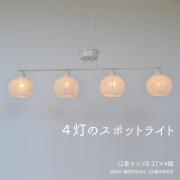 SD-403花うさぎピンク×小梅白(1)