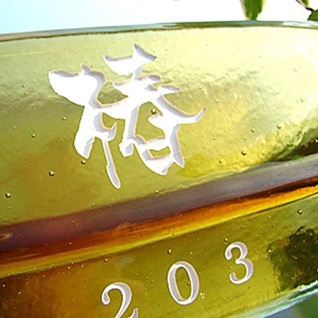hf-0123ガラス表札長方形商品画像