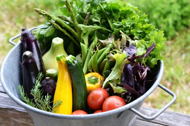 【まる弥企画】朝どれ野菜のサラダ便