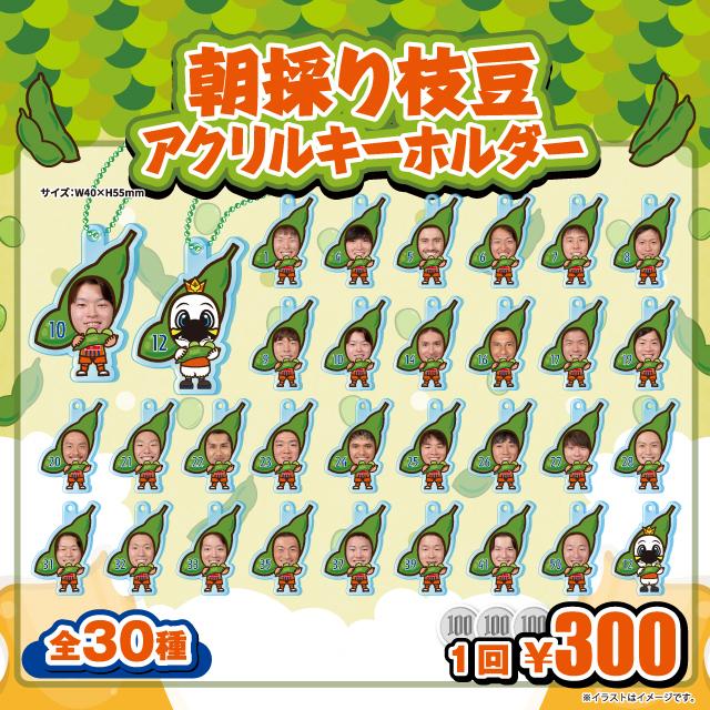 【ガチャガチャ】朝採り枝豆キーホルダー