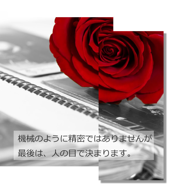 hariawase-50-1.jpg