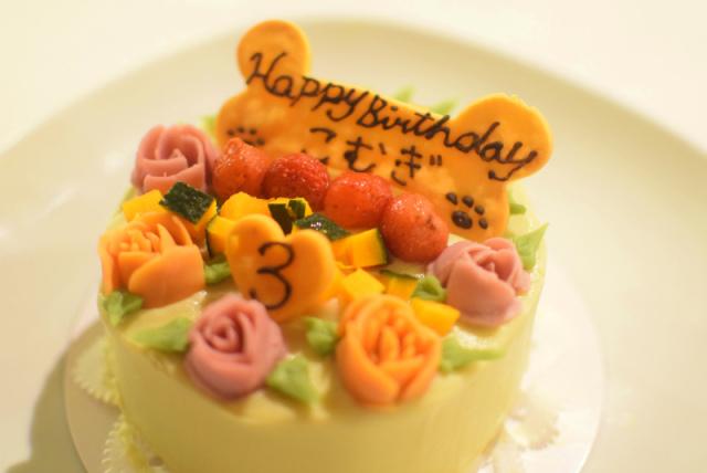 犬猫用☆お誕生日ケーキ 12センチ【冷凍】