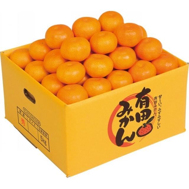 【送料込】 お歳暮ギフト 和歌山県産 有田みかん(5kg)