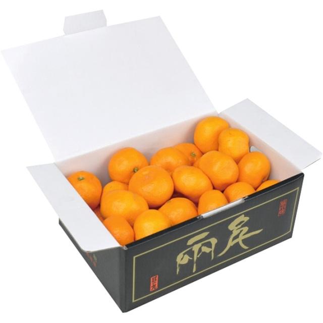 【送料込】 お暮ギフト 愛媛県産 日の丸みかん(2.5kg)