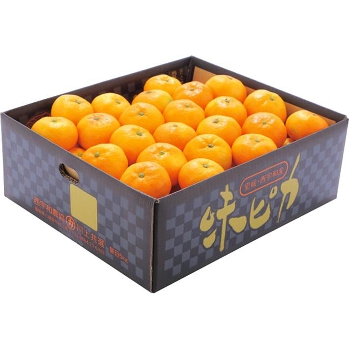 【送料込】 お暮ギフト 愛媛県産JAにしうわ 味ピカみかん(5kg)