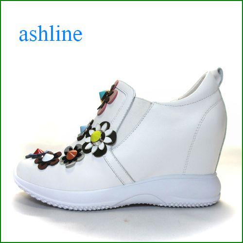 ashline アシュライン as161256wt  ホワイト 【靴がもっと好きになる*カラフル&とんがりお花の** ashline  かわいいインヒールスニーカー】