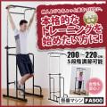 [最終処分品][廃番/売り切り/保証なし]【B級品】FA900/懸垂マシン/アルインコ(ALINCO)