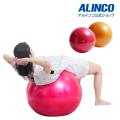 エクササイズボール55cm(ピンク/オレンジ)/WBN055
