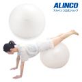 エクササイズボール65cm/WBN065