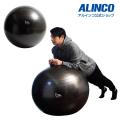 エクササイズボール75cm/WBN075