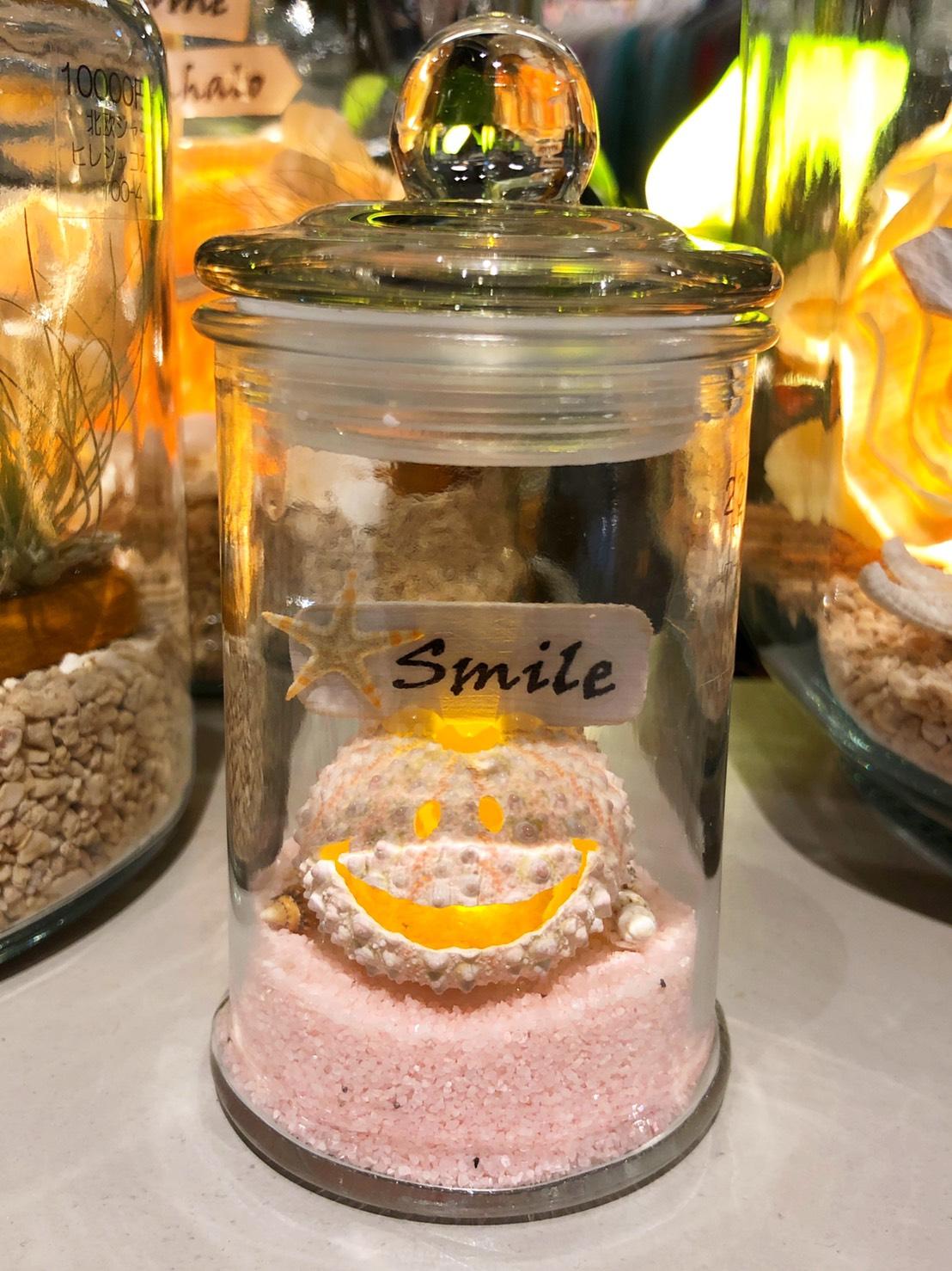 【ShellC】 シェルランプ  マイクロポッド smile