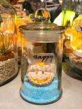 【ShellC】 シェルランプ  マイクロポッド Happy