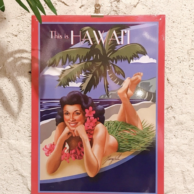 インテリアプレート/ハワイアンブリキ看板ボード5【ハワイアンインテリア】