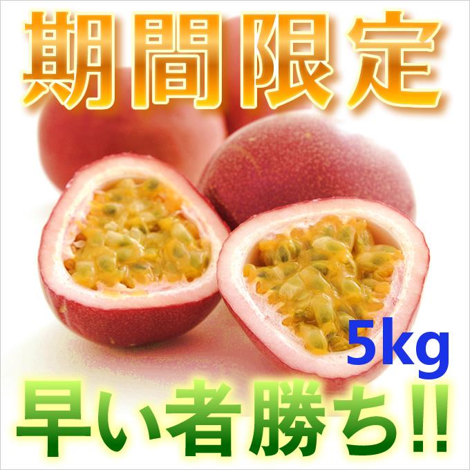 奄美大島訳ありパッションフルーツ5kg/家庭用/ぱっしょんふるーつ/送料無料