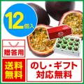 奄美大島パッションフルーツ/贈答用/12個入り/ぱっしょんふるーつ/お中元/送料無料