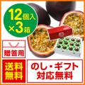 奄美大島パッションフルーツ/贈答用/12個入り×3箱/ぱっしょんふるーつ/お中元/送料無料